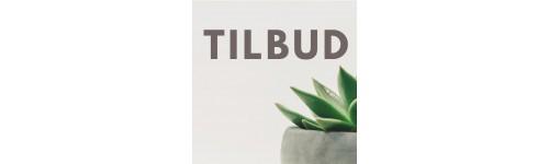 TILBUD - UDENDØRS